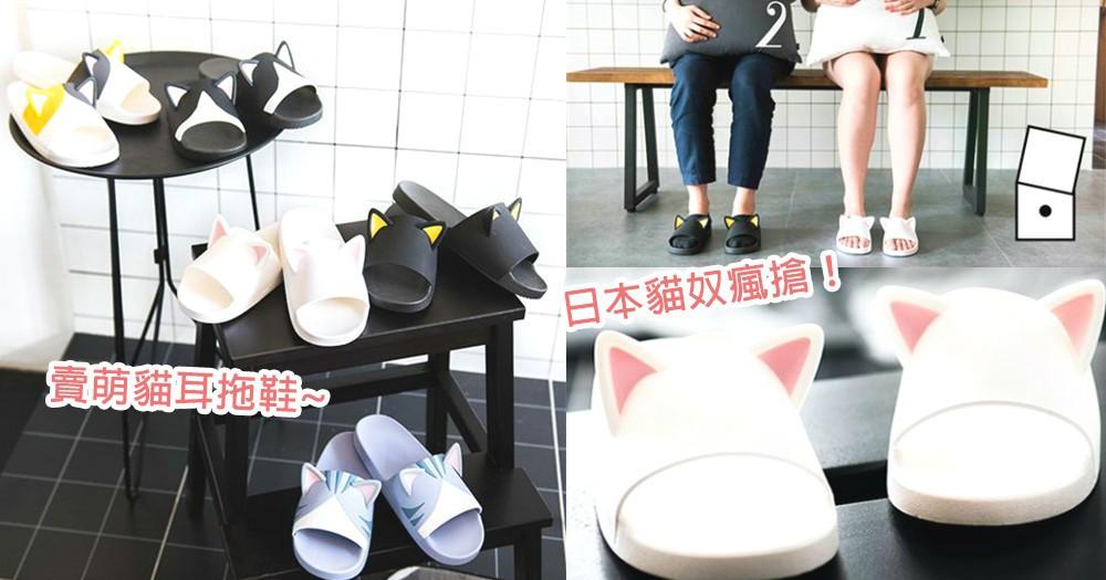 日本貓奴們瘋搶!讓人有包色衝動的可愛「貓耳拖鞋」,來燒貓奴們的錢包喔~