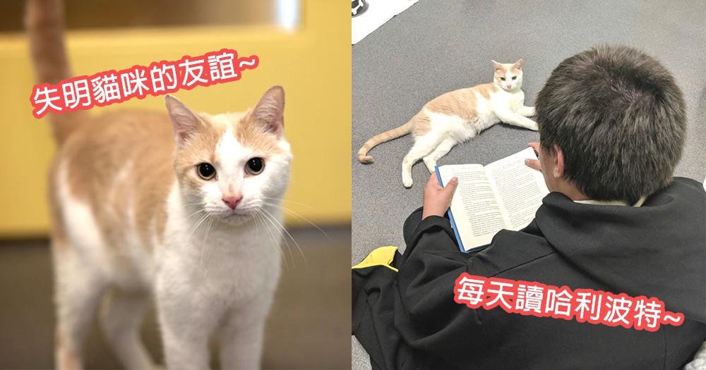 讓努力打破隔膜!小男生為失明貓堅持讀《哈利波特》,終造就最特別美麗的友誼~