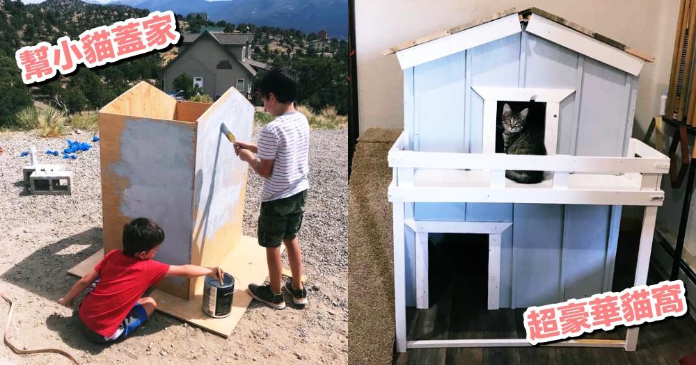 超猛小貓奴!小男孩終獲爸媽同意養貓,親手為愛貓打造兩層樓超豪華貓屋!