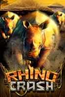 Rhino Crash