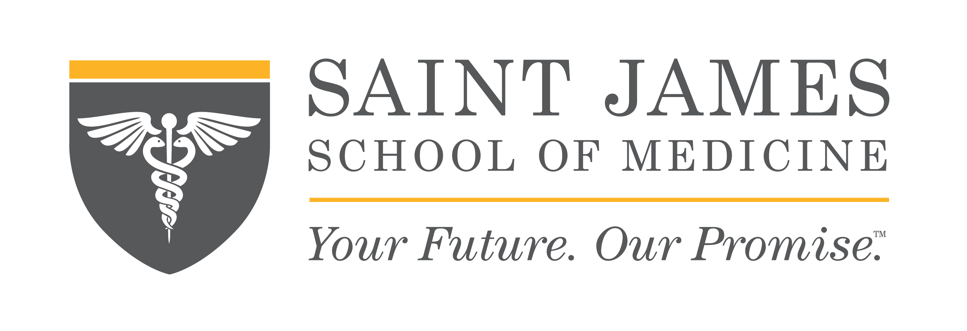 Saint James School of Medicine banner