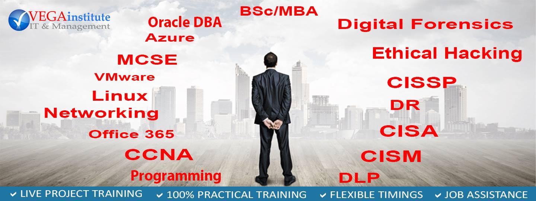 VEGA INFORMATION TECHNOLOGY & MANAGEMENT INSTITUTE LTD banner
