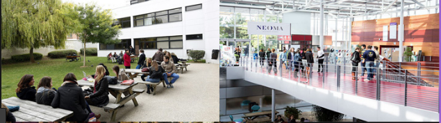 NEOMA Business School banner
