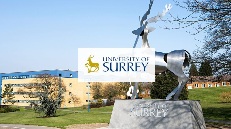 University of Surrey banner