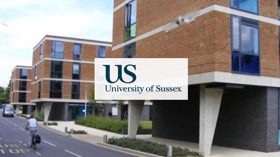 University of Sussex banner