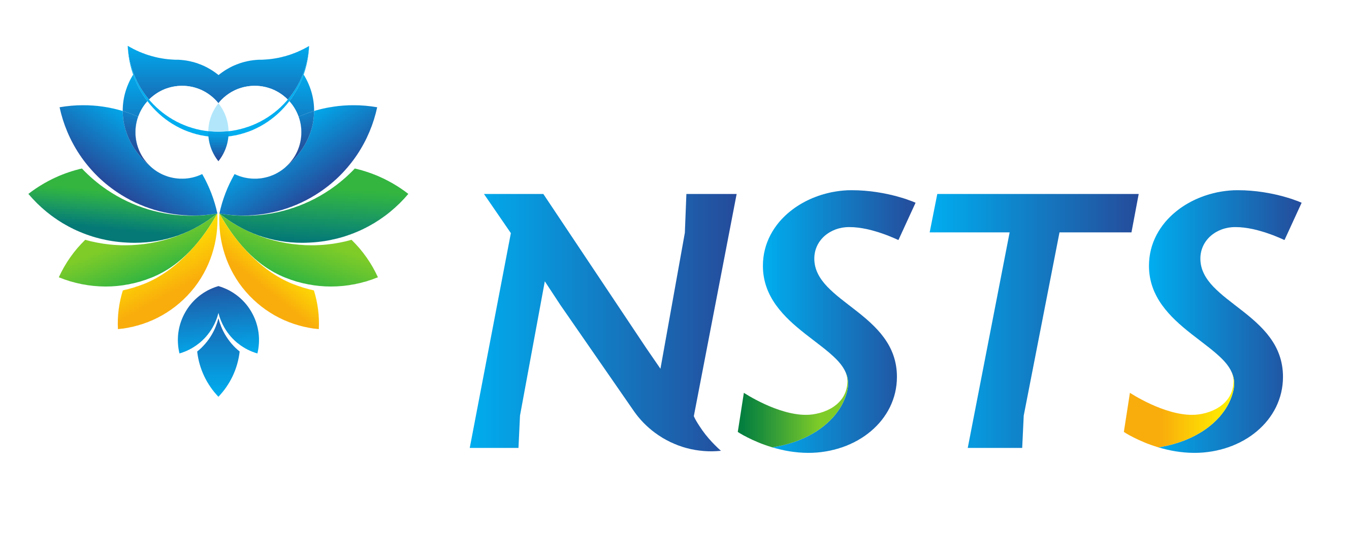 NSTS banner
