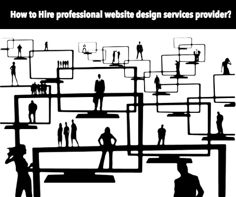 Hire Professional Website Design Services Provider Agency in India