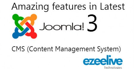 Professional Joomla Content Management System Services India