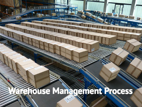 Best Warehouse Management Process