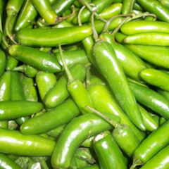 Small Green chilli -very hot 1