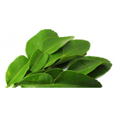 Lime leaf-daun jeruk