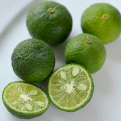 mini lime-jeruk limau