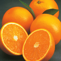 naval large juicing orange USA.