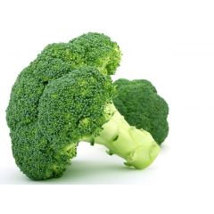 large broccoli 1