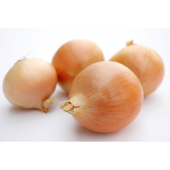nz brown skinned onions