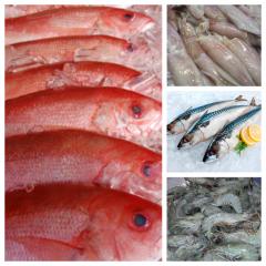 seafood mix box1