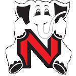 Logo Nayaka Online