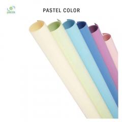 Pastel Color 100 x 120 cm