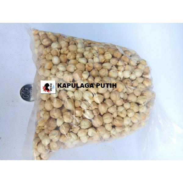 Biji Kapulaga Putih 1 kg