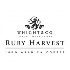 whight-co-cafe-feature-image