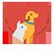pet-care-feature-image