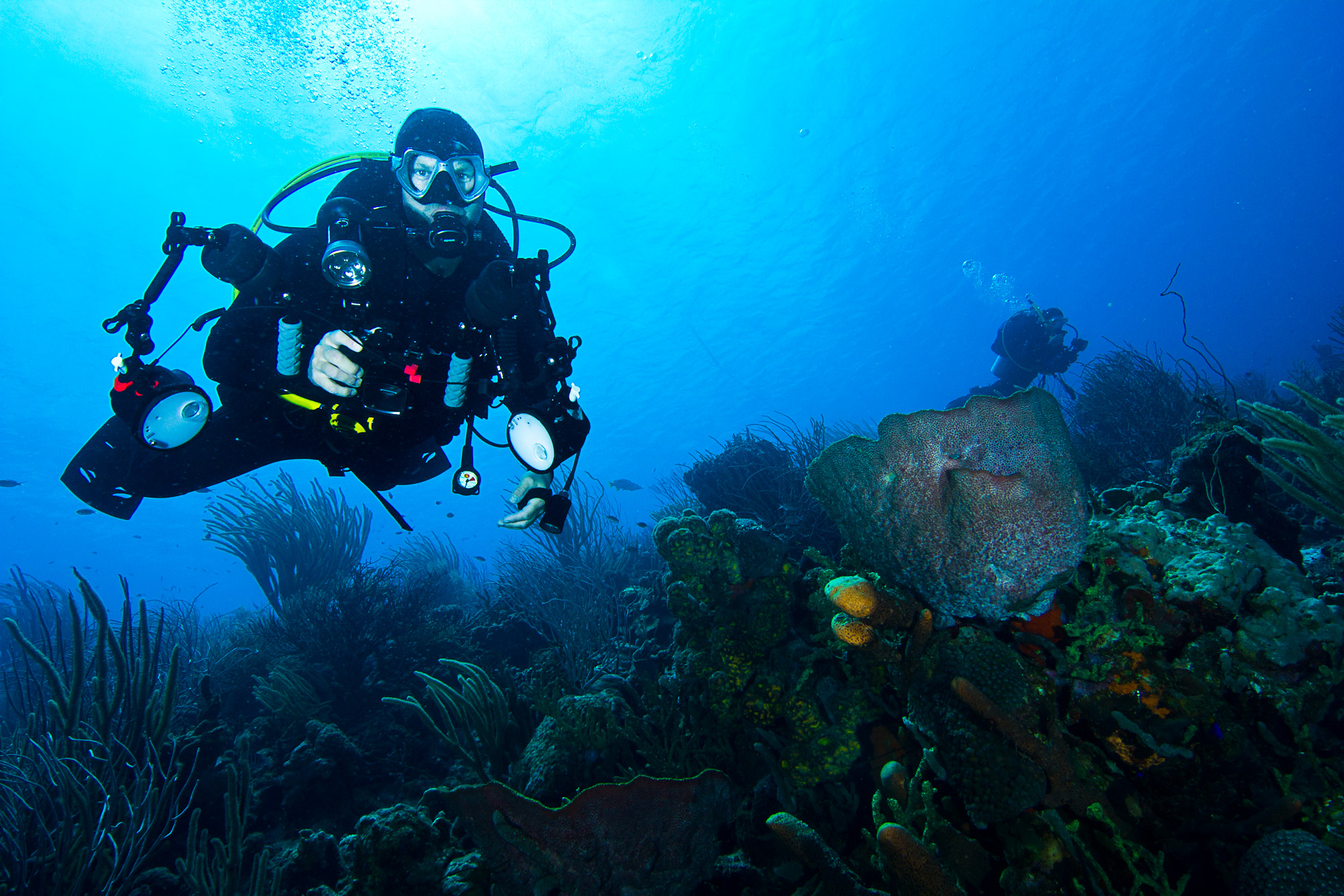 5 reasons why Tenggol is every scuba divers favorite dive site