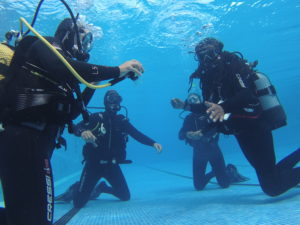 3 Easy Steps If You Want To Start Scuba Diving