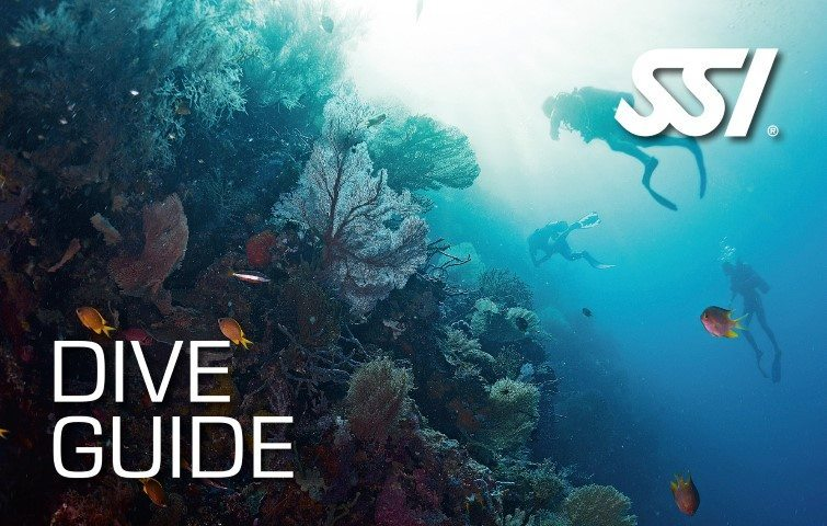 472573_Dive-Guide-Small1