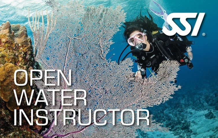 472580_Open-Water-Instructor-Small1