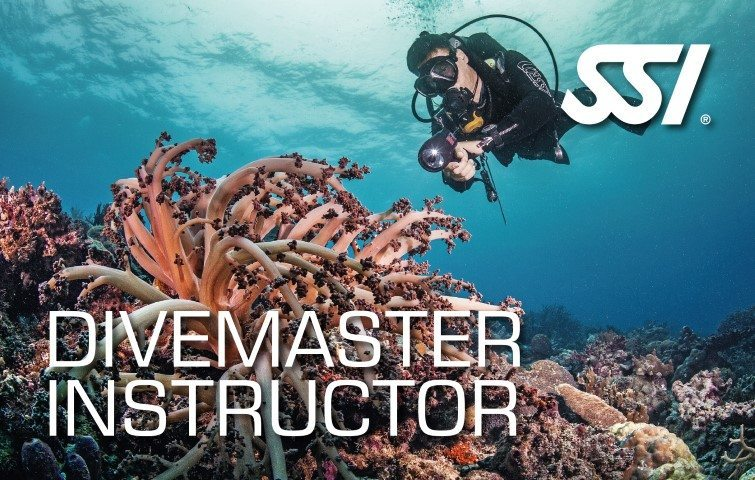 472620_Divemaster-Instructor-Small1