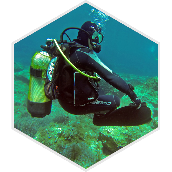 Professional-Dive-Course1