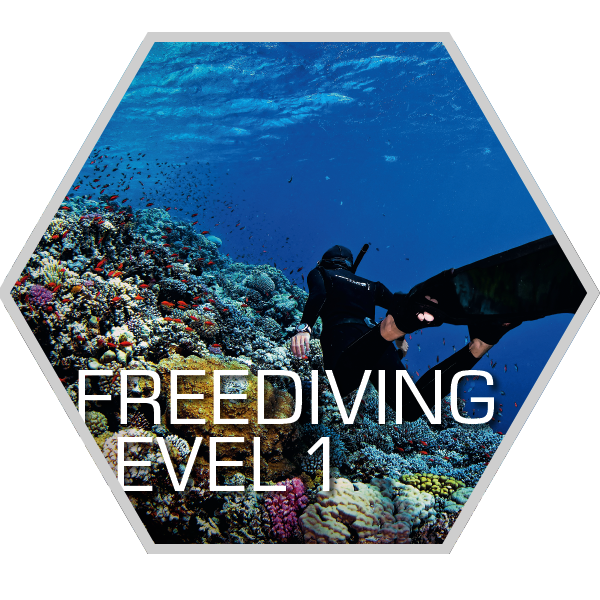 ScubaAce-Freediving-1