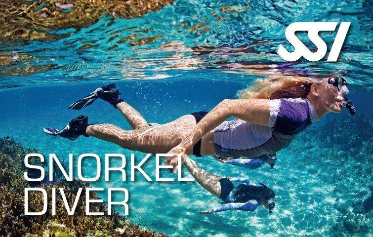 snorkel_diver