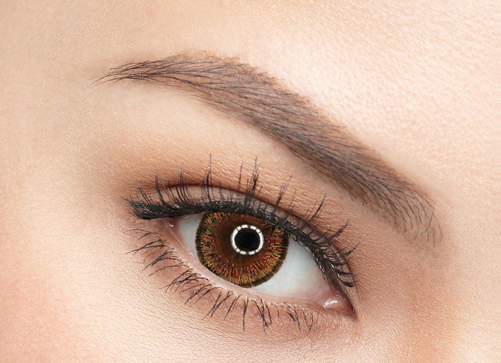 web_cat_eyes_brown_1024x1024.jpg