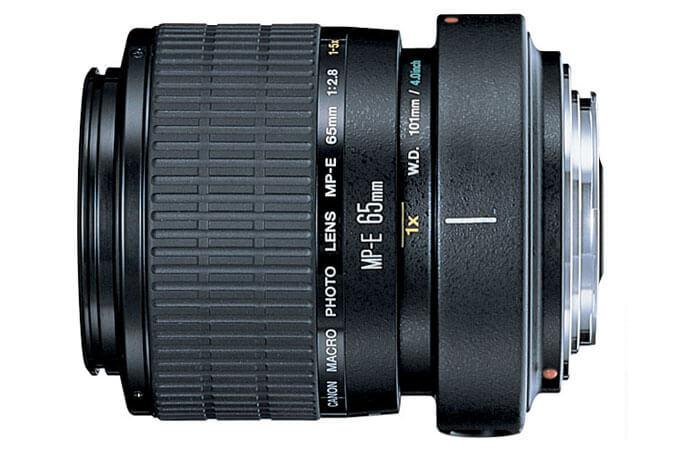 MP-E 65mm f_2.8 1-5x Macro Photo  1.jpg