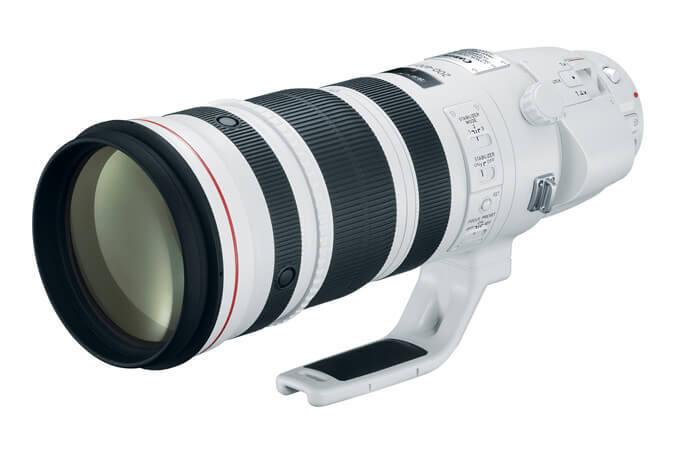 EF 200-400mm f_4L IS USM Extender 1.4x 1.jpg