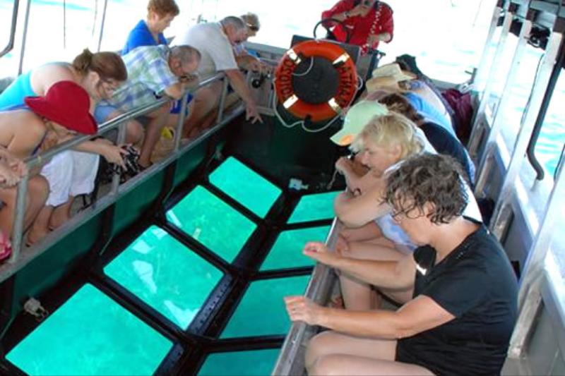 Glass Bottom Boat & Turtle Island