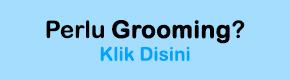 Jasa Grooming