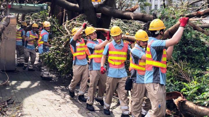 [義工] 香港建造學院 - 上水院校 - 為天平山村居民清理塌樹