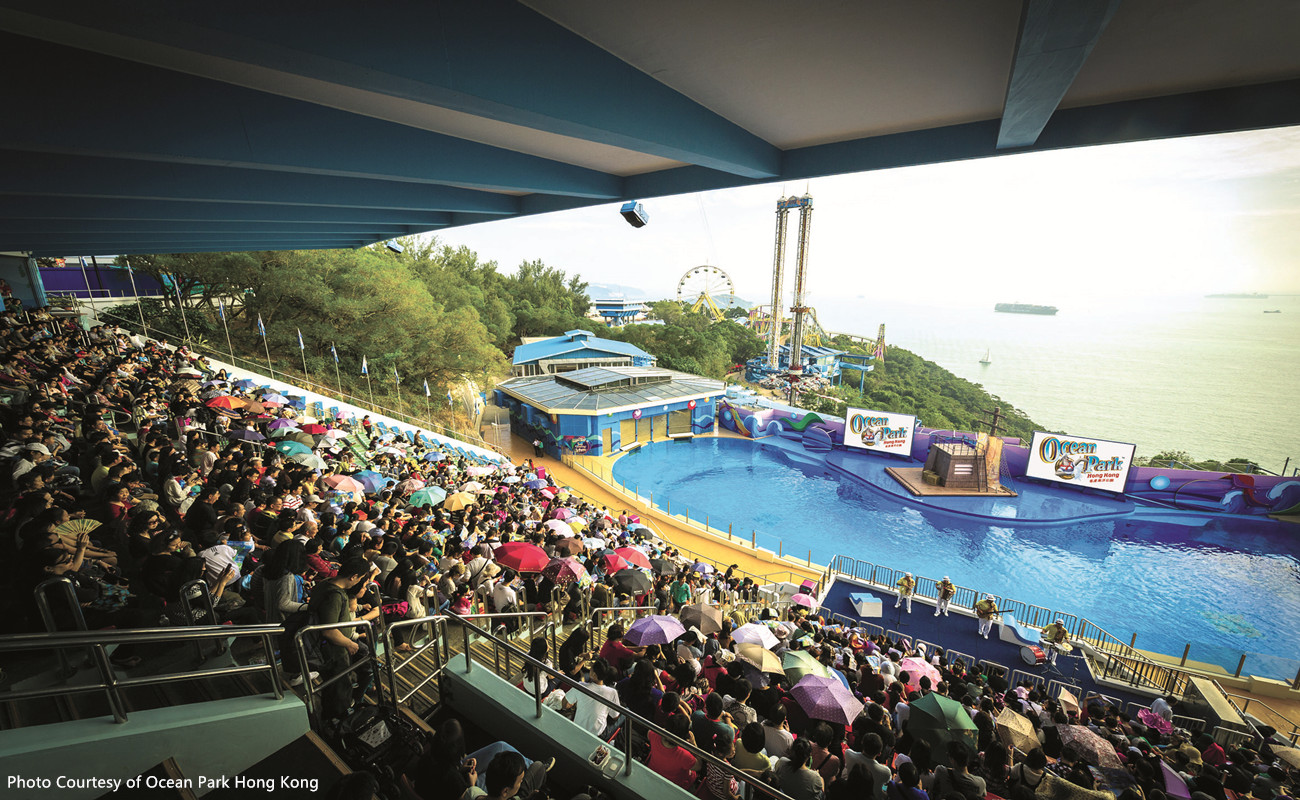 Hong Kong City Tour Pass with Ocean Park