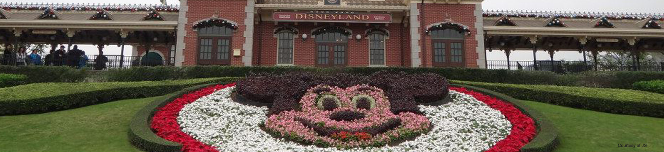 Hong Kong Disneyland | Hong Kong Attraction