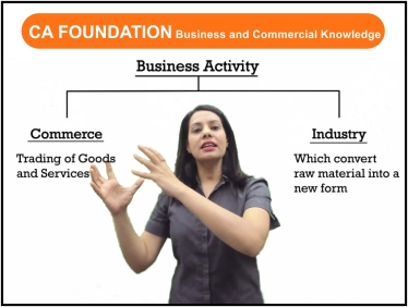 CA Foundation - Business Commercial Knowledge for Nov 19 and May 20