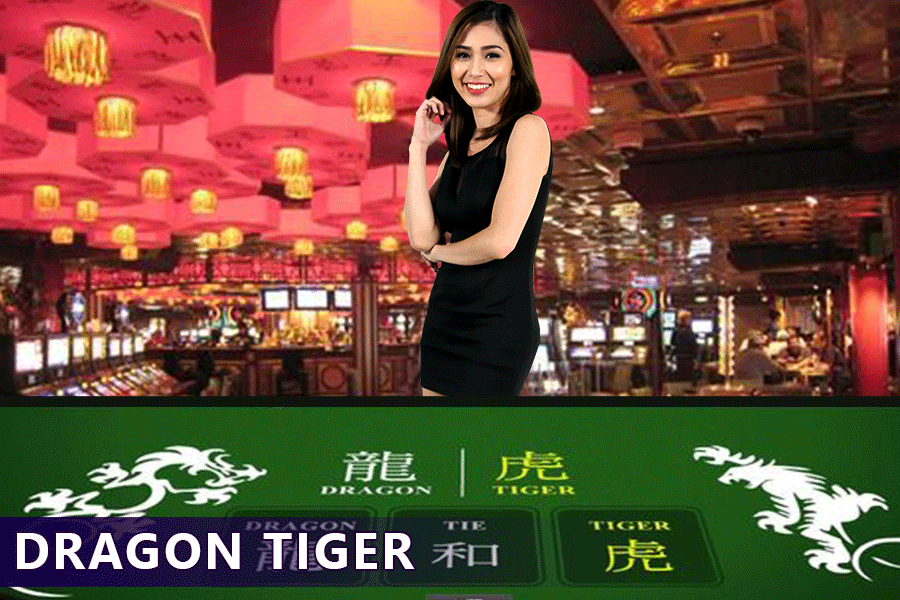 tips to win Dragon Tiger Online