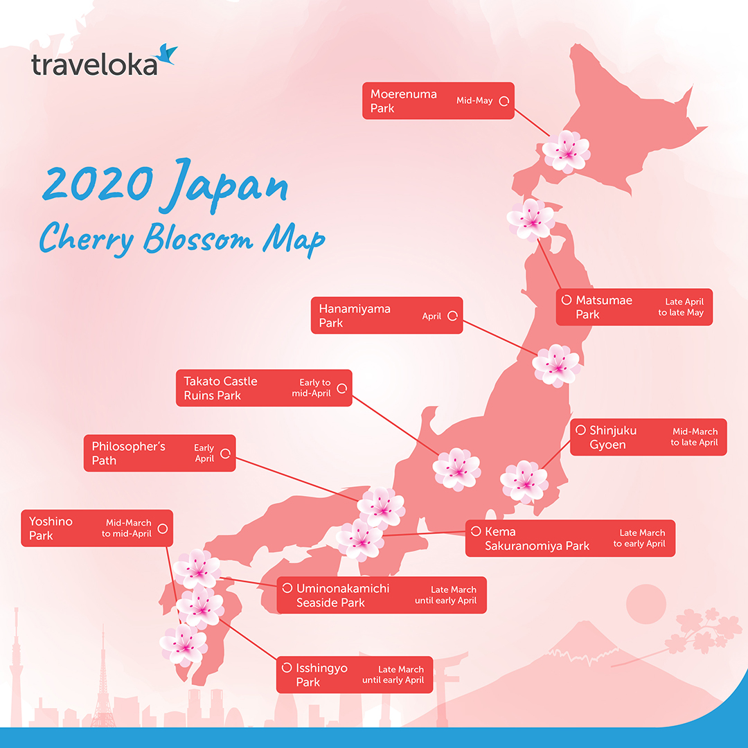 10 Places You Can Enjoy The Cherry Blossoms In Japan