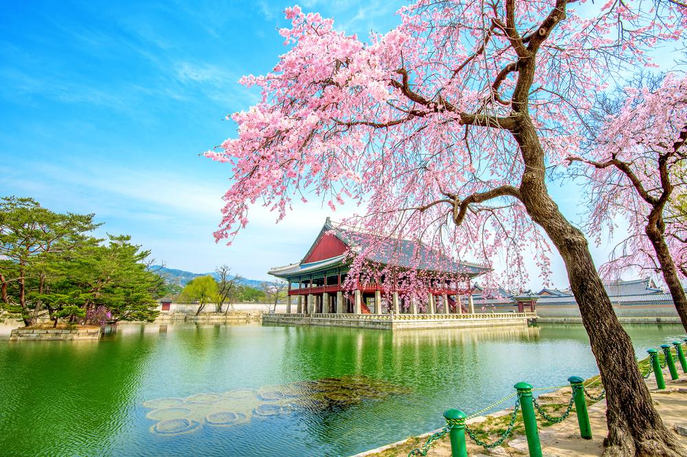 60 Tempat Wisata Di Korea Selatan Yang Seru Dan Tidak Akan Terlupakan