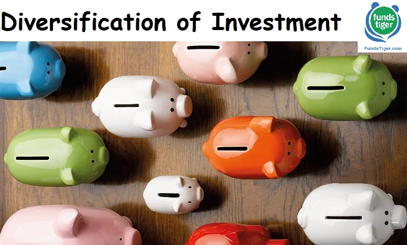 Diversification of Investment