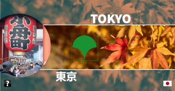 Tokyo trip photo collage