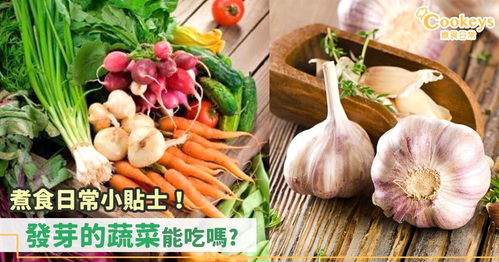 發芽的蔬菜食了就會中毒嗎? 看完之後就不用亂丟蔬菜了~