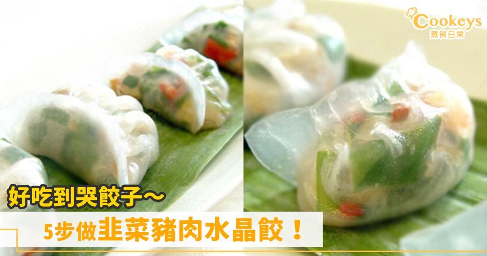 超好吃餃子!5步做韭菜豬肉水晶餃!