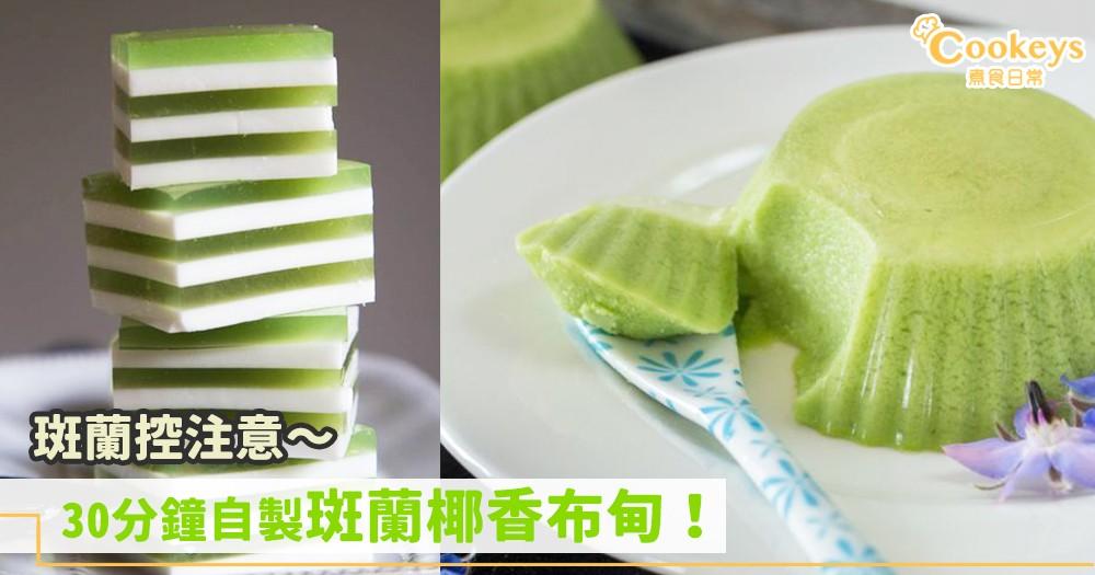 斑蘭控注意~30分鐘自製斑蘭椰香布甸!